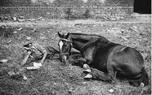 Artillery driver relaxing with his horse.  Photo from The National Library of Scotland