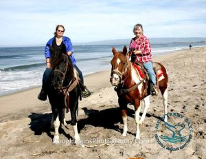 Lacking our own pair of sane, sound, trailworthy horses, we rented a pair for my mom's 75th birthday celebration.