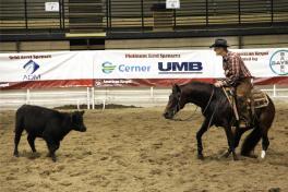 cutting_horse