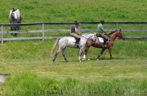 One of Denny's hacking pictures that make me so jealous!