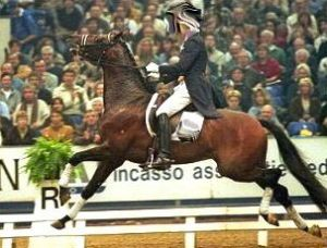 Becoming a more common sight in the Dressage arena than ever before.
