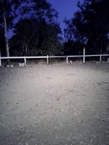 Our now well lighted arena will be appreciated as daylight hours dwindle
