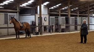 Laurel and friend take a break and address the audience during a long reining demonstration.